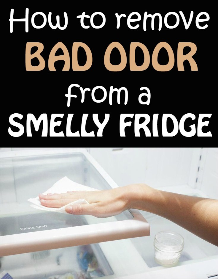 How To Remove Bad Odor From A Smelly Fridge