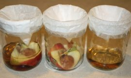Household Tricks To Get Rid Of Fruit Flies