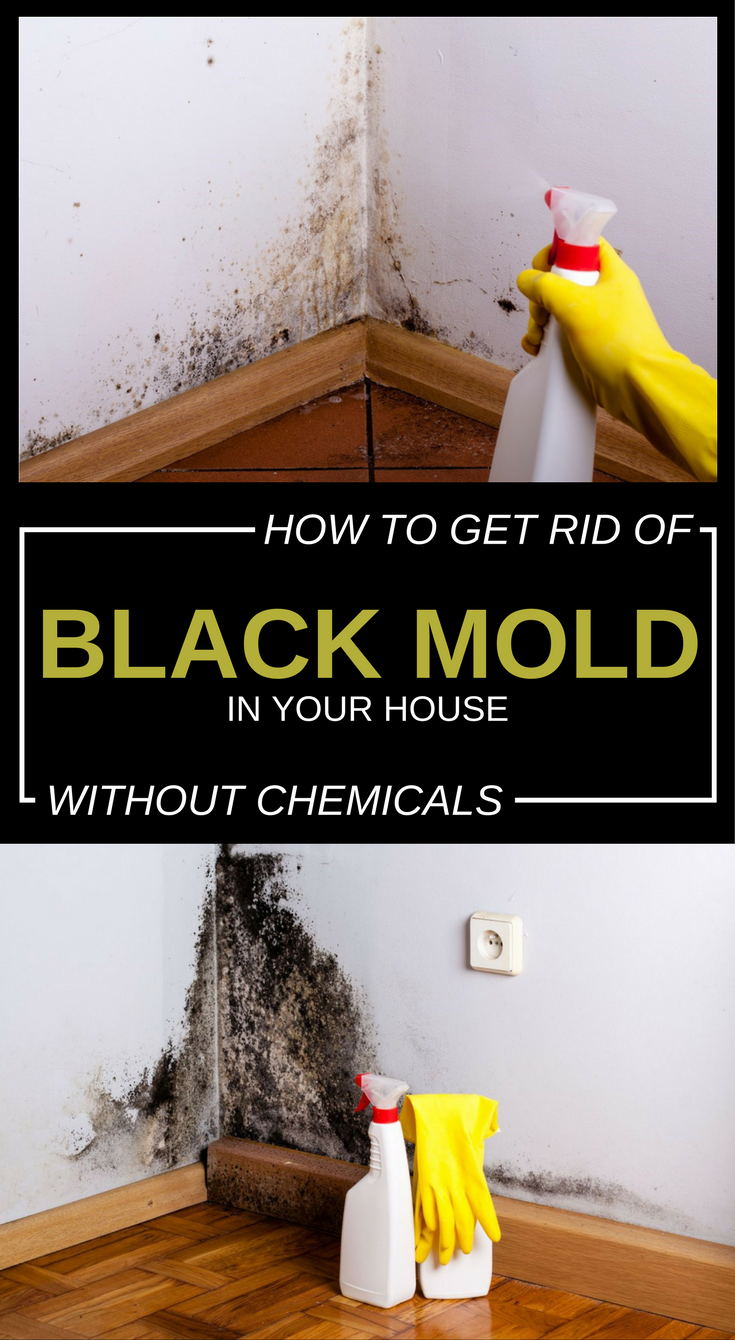 How to get rid of black mold in your house without - Getting rid of black mold in bathroom ...