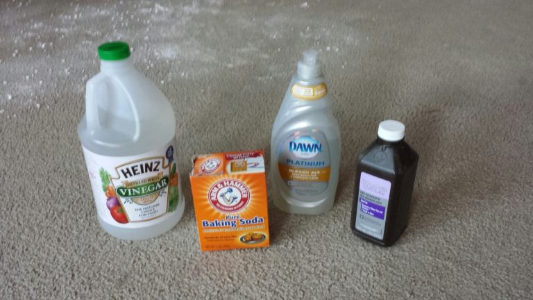 The Ultimate Guide To Get Rid Of Cat Urine Smell Using Natural Solutions