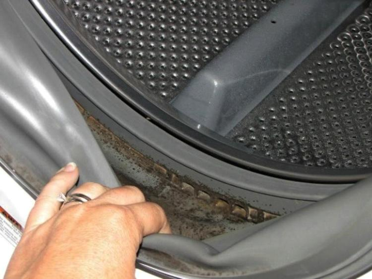 Brilliant Natural Solution To Get Rid Of Mold From Front-Load Washing Machine