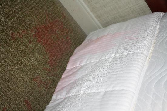 How To Clean Vomit Stains And Odor Out Of A Mattress